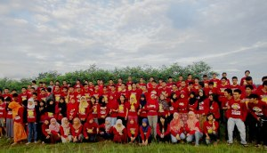 6-alfalfa.jpg